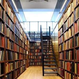 Библиотеки Колпино